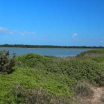 Saline of Monks – A natural oasis along the Salento coastline